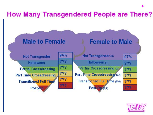 Transgender People, Gender Identity and Gender Expression